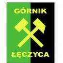 Górnik Łęczyca