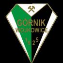 Górnik Wojkowice