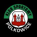 KGHM Metraco Górnik Polkowice