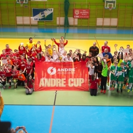 """ROCZNIK 2007: Puchar """"ANDRE CUP 2017"""" 26.02.2017"""