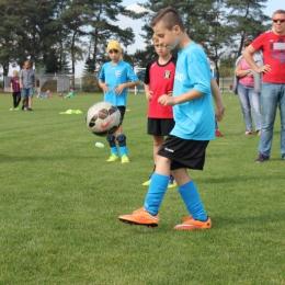 Gogolin Cup 2015