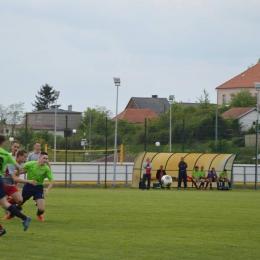 Radzynianka - Węgrowianka