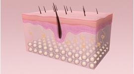 冬季皮膚護理怎么做才能細膩零毛孔