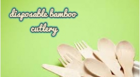 These are generally the reasons to select disposable tableware. Would you choose?