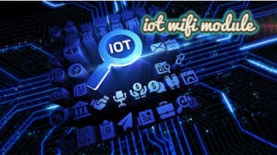 What are the advantages of wireless wifi in the IoT that lead to high demand!