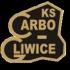 Carbo Gliwice